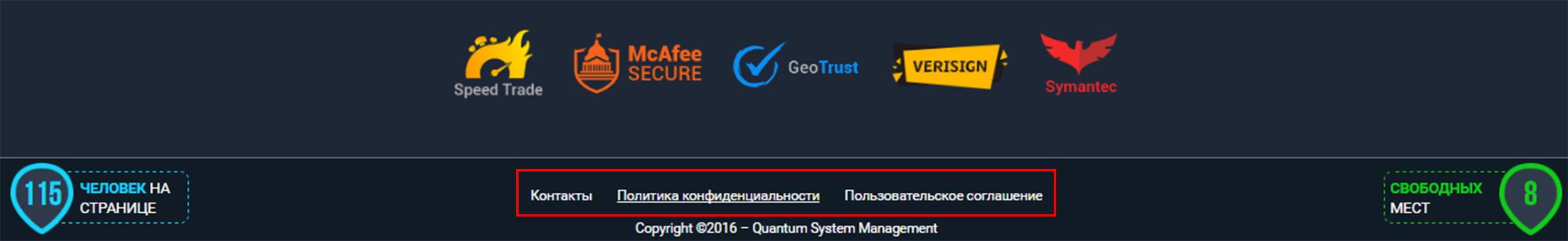 технические разделы quantum system management