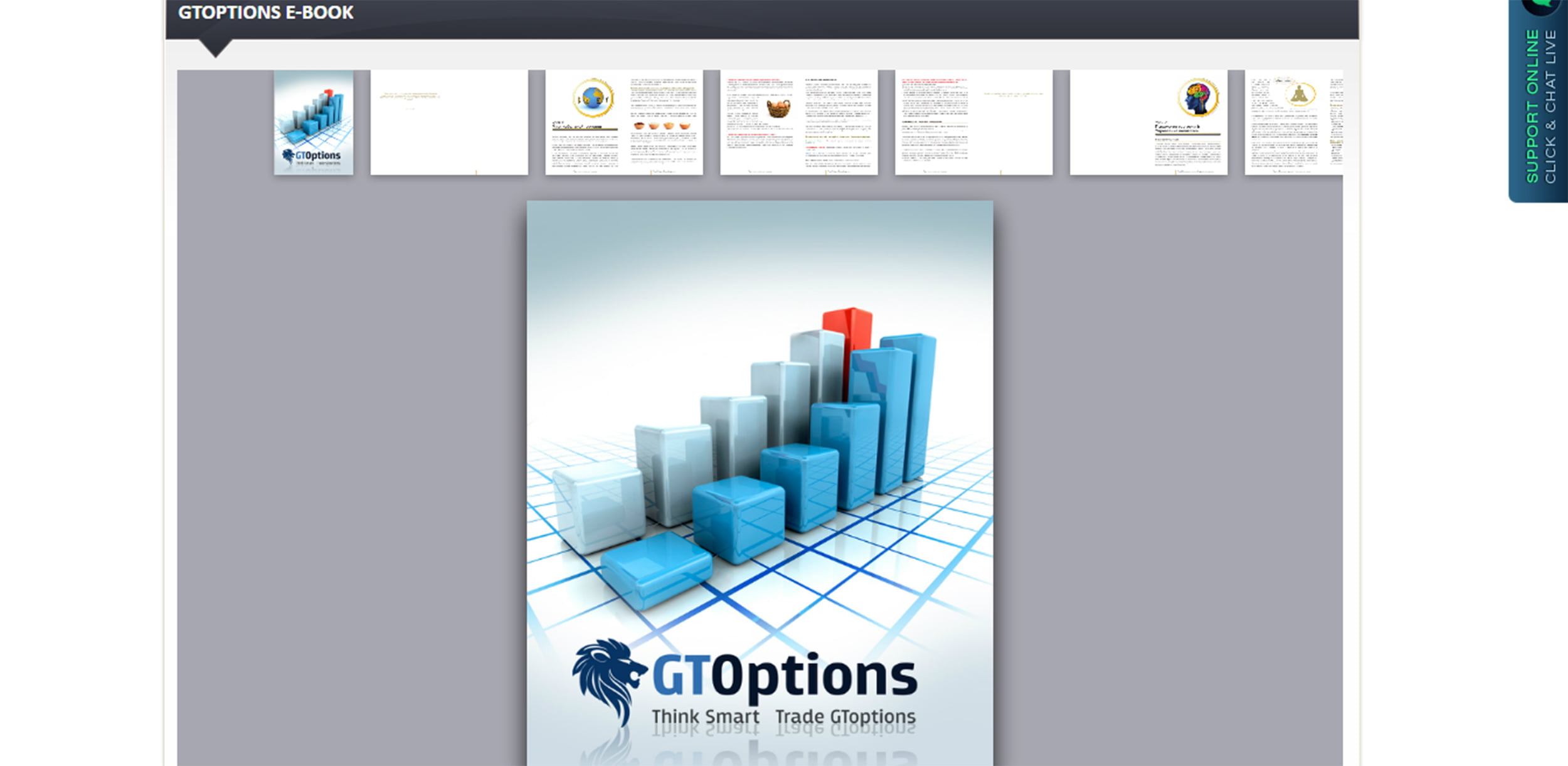 Обучение торговле бинарными опционами на сайте GTOptions.com