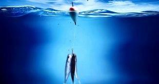Бинарная стратегия «Рыбалка» для М 30