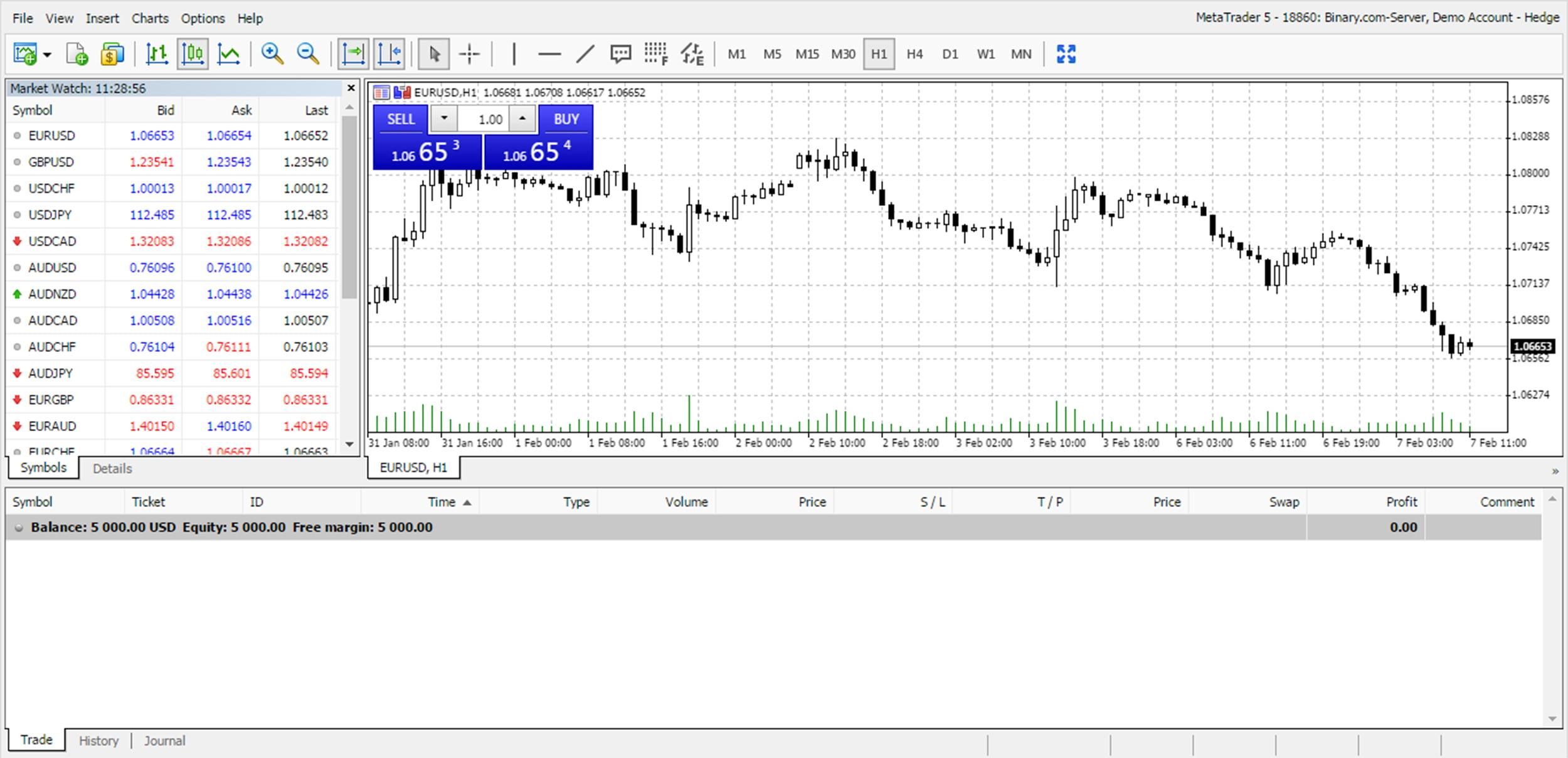 Установка Metatrader 5 для торговли бинарными опционами