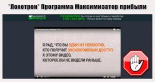 Максимизатор Прибыли
