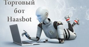 торговый-бот-Haasbot