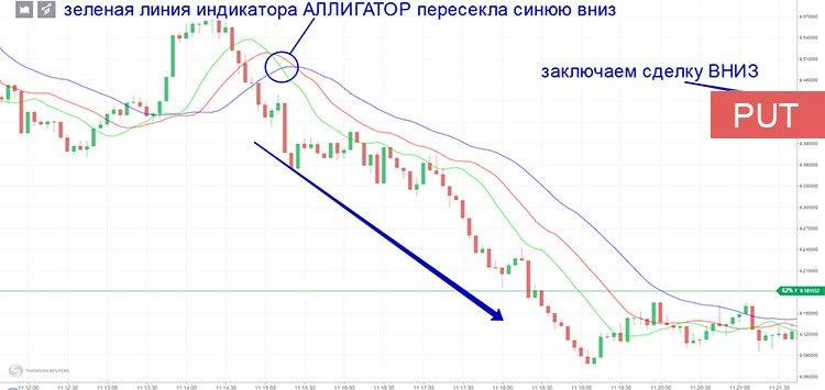 Торговля бинарными опционами по индикатору «Аллигатор»