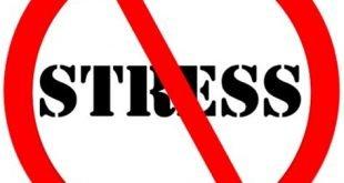 Долгосрочная стратегия No Stress для Форекс